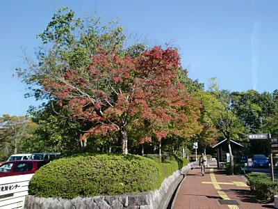 滋賀県立図書館